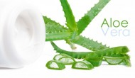 Is Aloe Vera Really Such a Powerful Plant?