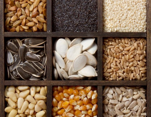 The Most Valuable Seeds In The World – What Do We Really Know About Their Health Benefits?