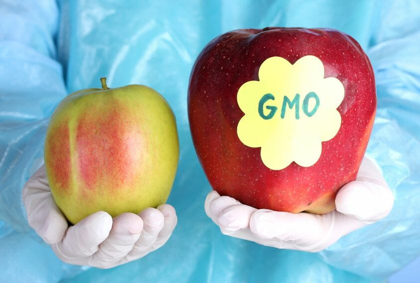 all about gmo food