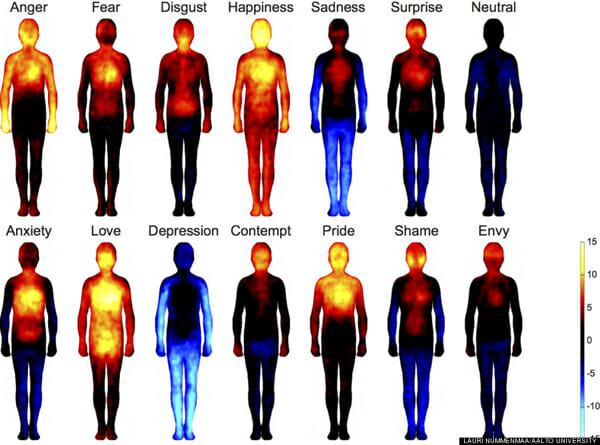 What Can Emotions Tell You About Your Body?