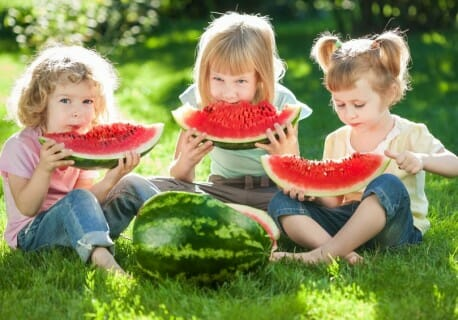 14 Reasons Why Watermelons Are Healthy Summer Snacks