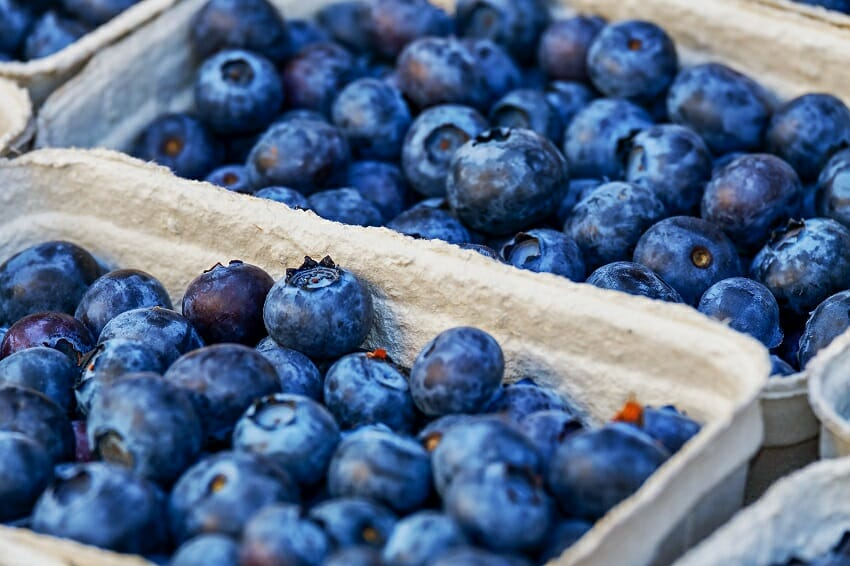 skin health tips for summer - eating Blueberries