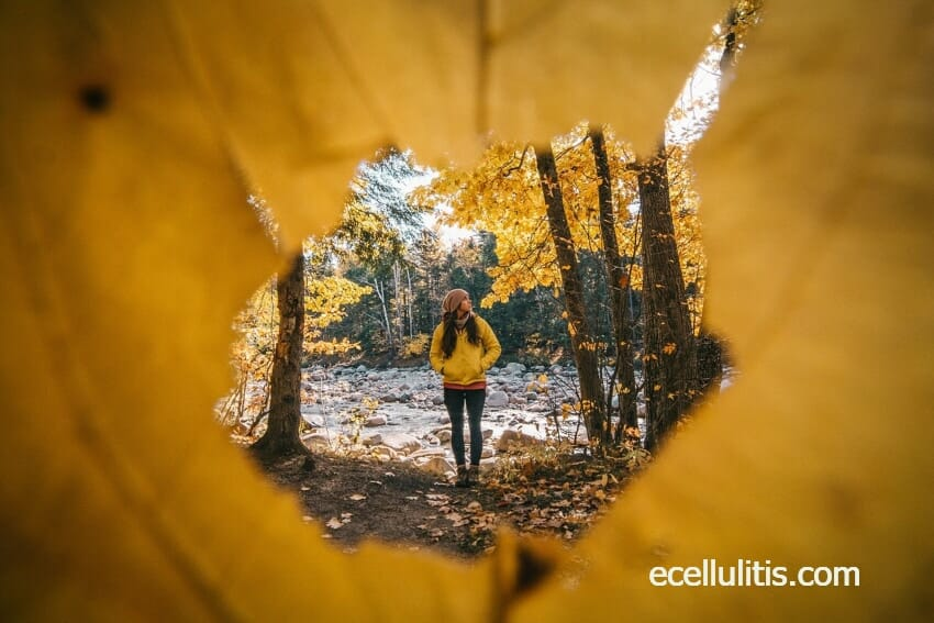how to boost your natural defense system this fall-recop