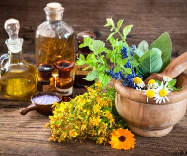 Learn How to Prepare Herbal Remedies