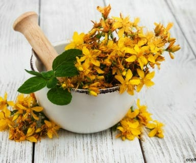 The Benefits of St. John's Wort