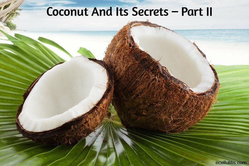 coconut and its secrets – part II