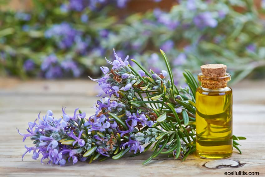 rosemary - for common winter health problems and skin protection