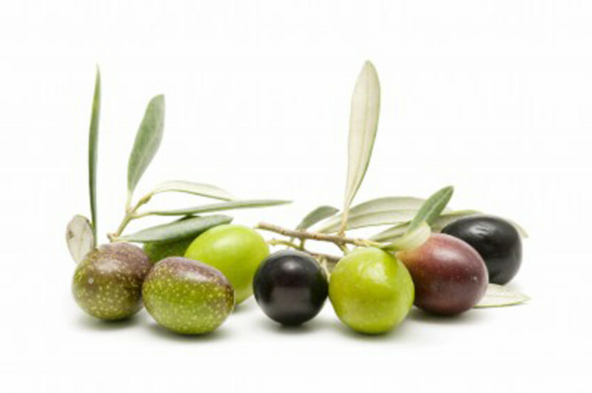 Green and Black Olives – What is the difference?