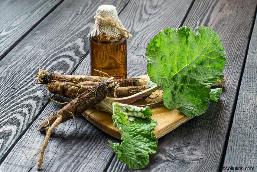 benefits of burdock root tea