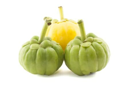 garcinia camboiga or malabar tamarind