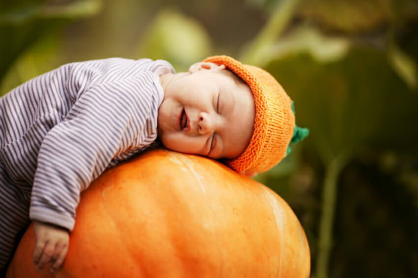 Pumpkins for healthy sleep – pumpkin and pumpkins seeds regulate sleep