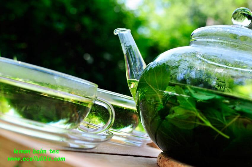 lemon balm tea health benefits