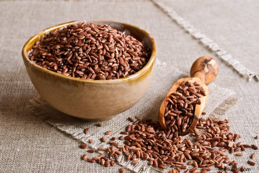 brown rice - Top 20 Foods For Memory, Concentration And Energy