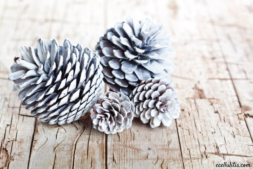 pinecones - perfect holiday home decorations