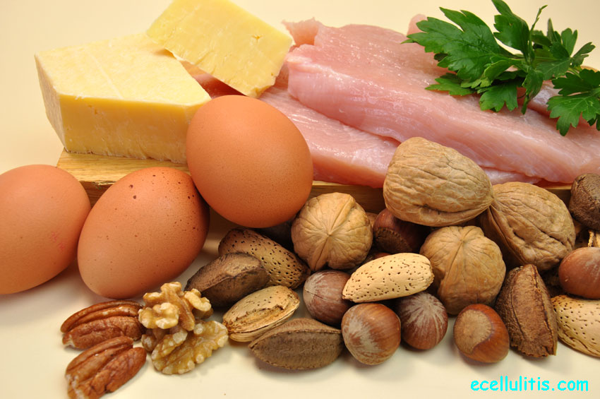 Healthy food - sources of protein