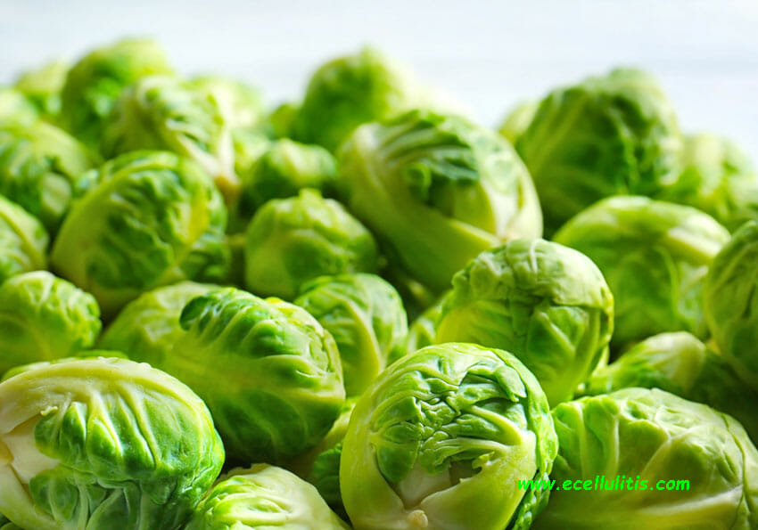 brussels sprout health benefits - fall food