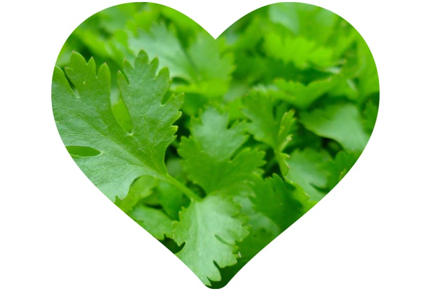 Parsley for the skin
