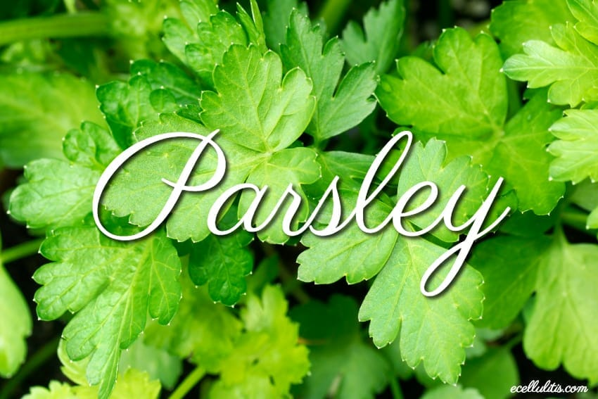 12 totally cool health benefits of parsley